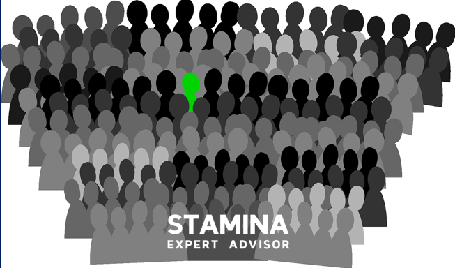 stamina expert advisor trading online